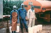 Pesticides workers image